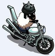 Lady Gaga Sheep