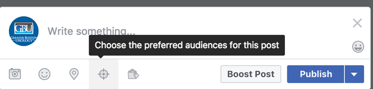 Facebook Preferred Audience Selection