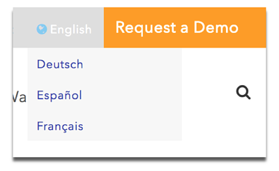 Request a Demo Example