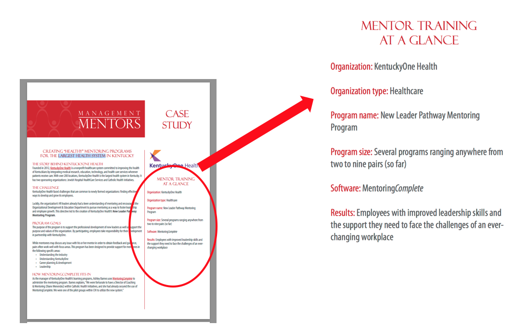 Management Mentors Sidebar Summary Example