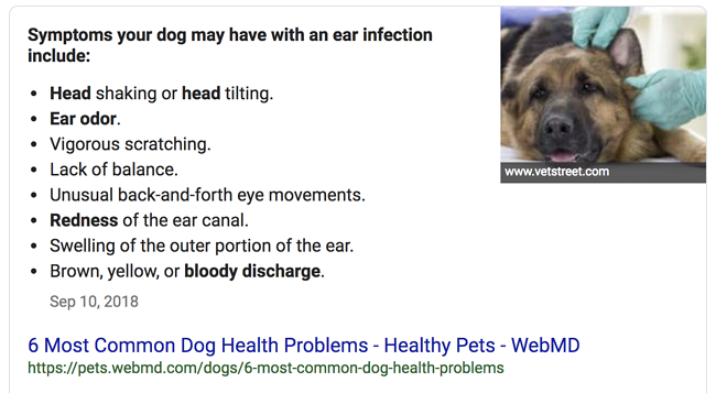 Featured Snippet Example: Bulleted List Snippet
