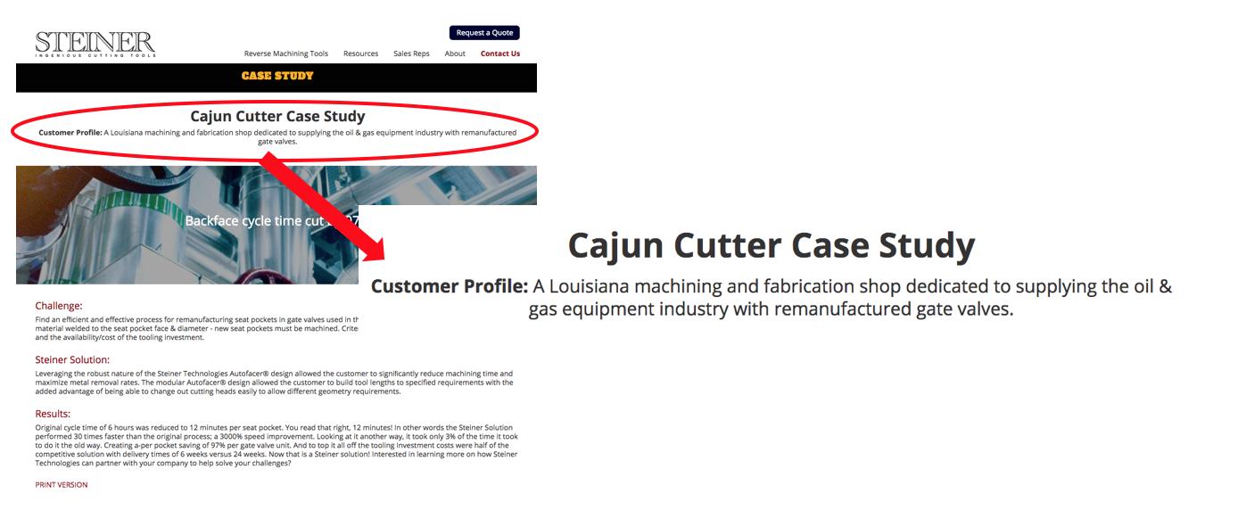 Steiner Technologies Customer Profile Example