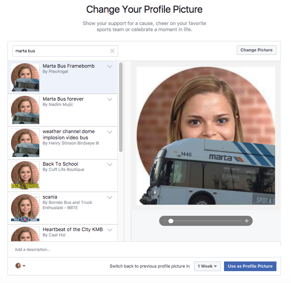 Alexis Custom Facebook Profile Frame Example
