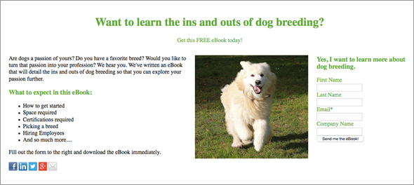 dog-breeding-landing-page-design.png